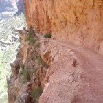 N. Kaibab Trail.  Some of it's kind of hairy if you're afraid of heights.