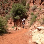 Sticking my way up the N. Kaibab Trail