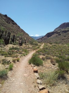 Nearing Cottonwood Campground