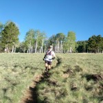 Running through a meadow on Kachina Trail